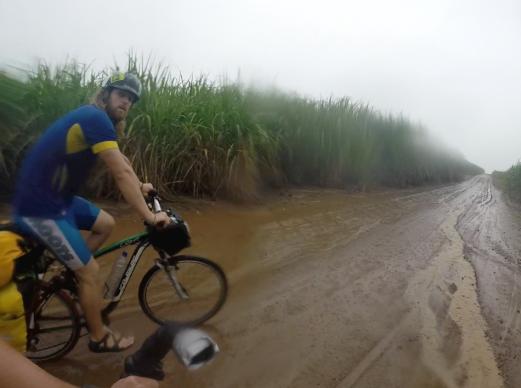 lost in a sugarcane field. in the rain